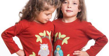 Zwillingsratgeber zwillinge-shirts-zwillingsbaum-rot-375x195 Zwillings-Reisebetten – Was man beim Kauf beachten sollte