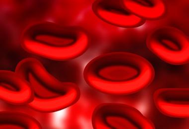 Zwillingsratgeber nabelschnurblut-1-380x260 Stammzellen aus dem Nabelschnurblut – Nutzen und Chancen