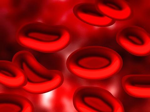 Zwillingsratgeber nabelschnurblut-1 Stammzellen aus dem Nabelschnurblut – Nutzen und Chancen