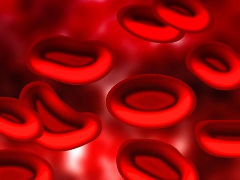 Zwillingsratgeber nabelschnurblut Stammzellen aus dem Nabelschnurblut – Nutzen und Chancen
