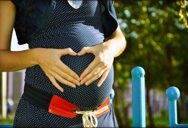 Zwillingsratgeber pregnant-244662_640-380x260 Wie kann ich schnell schwanger werden?
