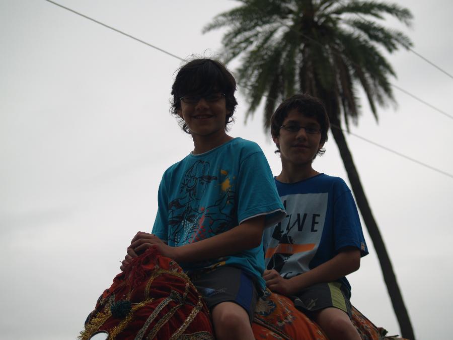 Zwillingsratgeber p1011242 Erste Tour nach Udaipur und Pushkar
