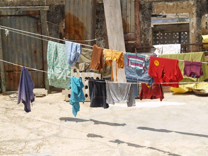 Zwillingsratgeber p1011528-700x525 Aufenthalt in Pushkar