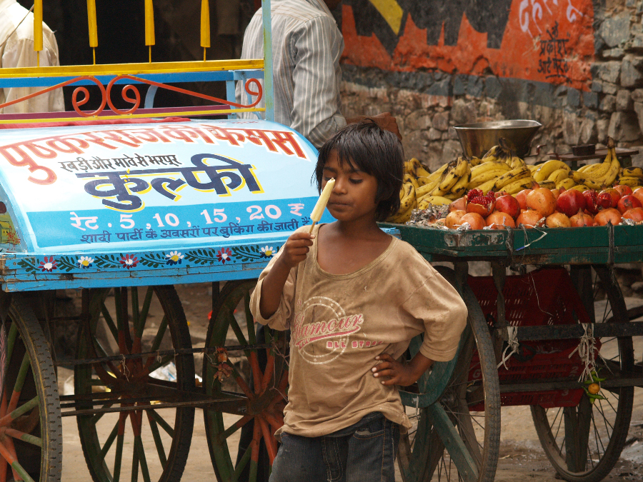 Zwillingsratgeber p1011567 Aufenthalt in Pushkar
