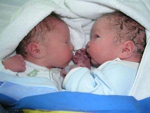 zwillinge-neugeboren