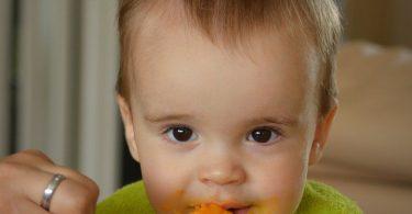 Zwillingsratgeber baby-essen-bumboo-booster-375x195 Auf dem Jakobsweg: Schwandorf nach Ensdorf