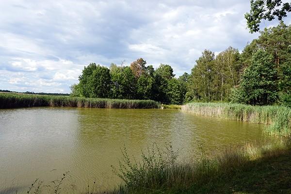 Zwillingsratgeber pilgern-jakobsweg-oberpfalz Auf dem Jakobsweg: Schwandorf nach Ensdorf