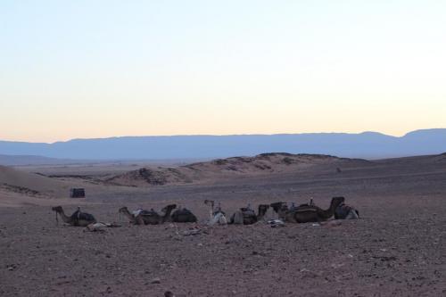 Zwillingsratgeber IMG_5981 Marokko Urlaub - Zwei Frauen unterwegs